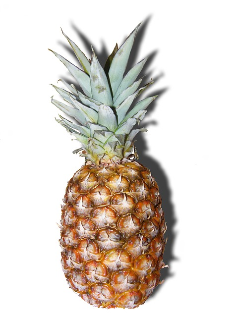 pineapple-professional-voice-blog-bronchitis-natural-relief-superfoods-allergy remedies-foods to fight allergies-ENT-ear-nose-throat-denver-colorado-voice-clinic