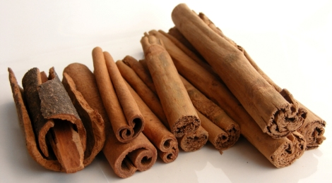 Professional Voice Blog - Cinnamon